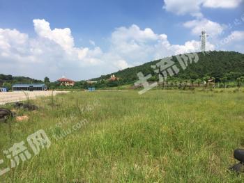 合肥肥西县紫蓬山景区内空地招租,适合卡丁车,物品堆放等