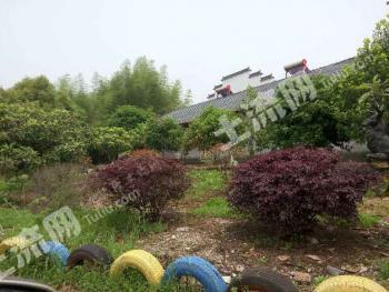 江夏梁子湖1300亩大型成熟山庄诚招乡村旅游度假合作项目或整体转让
