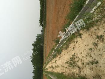 汉中城固县 64亩 农场 转包