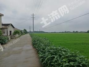 常德汉寿县 700亩 水田 出租