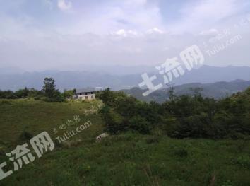 湖北宜昌长阳贺家坪镇1600亩山林62万出售