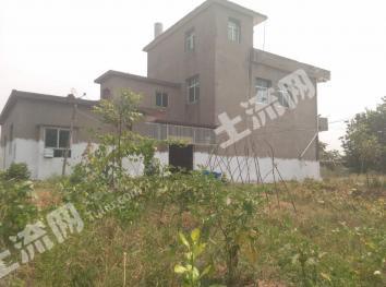 九江彭泽县 40亩 果园 转让