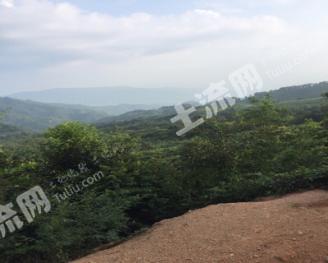韶关乳源瑶族自治县2590亩其它林地转让