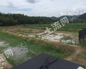 绍兴越城区55亩其它耕地转让