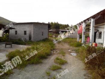 广州增城区 20亩家庭农场 低价转让(可种养结合)