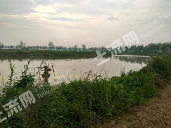 潜江137亩其它农林业用地转让