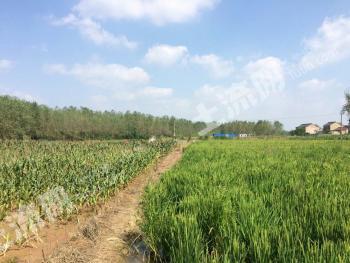 合作江苏六合区家庭农场