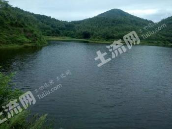 广东云浮 60亩 山塘水库 出租