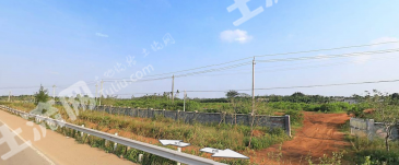 海南省海口市海文高速旁演丰镇20亩 果园 转让