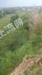 赤峰敖汉旗40亩其它园地转让
