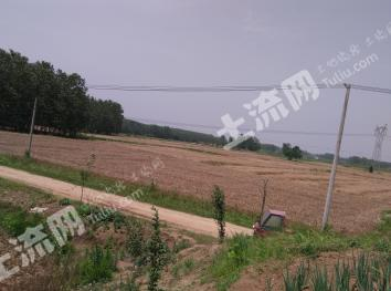 江宁区土桥有大宅院及菜地5亩长期出租