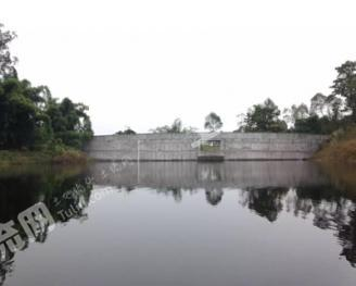 自贡荣县300亩水库水面转包
