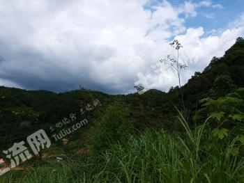 福州闽清县 30亩 种养殖畜牧养殖用地 转让