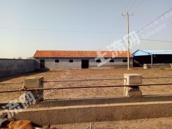 青岛胶州市 5亩 畜牧养殖用地 转让