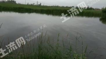 酒泉肃州区 15亩 坑塘水面 出租(A12)