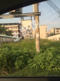 东源县园洲镇 220平米住宅用地 转让