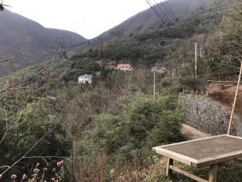 杭州临安市 <A八>宅基地农村民房出售