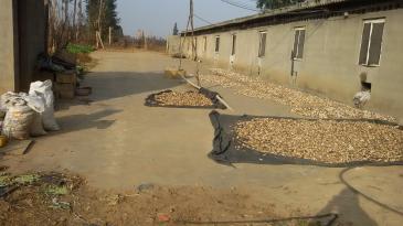 曲靖陆良县55亩 水浇地、3000平方仓库出租、转让、合伙开发
