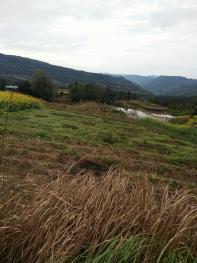 达州宣汉县 2000亩 其它耕地 出租
