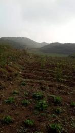 铜仁印江土家族苗族自治县 450亩 旱地 转让