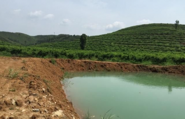 贵州铜仁1300亩果园土地转让