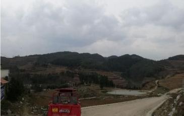 贵州六盘水2000亩农用地转让