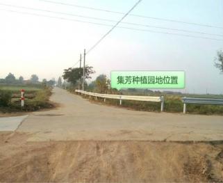 青岛即墨市 0.5亩菜地免费合作种植(扶贫性质)