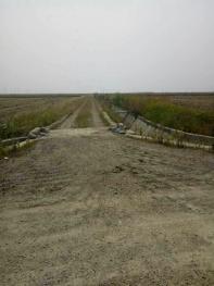 绍兴上虞区 1800亩 水田 出租