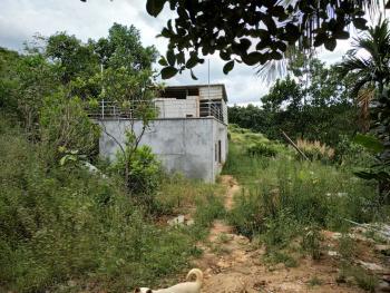 海南琼中黎族苗族自治县有 170亩 有林地 转让仅需80万