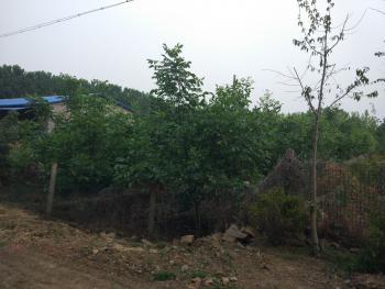 连云港赣榆区8000平米综合用地转让