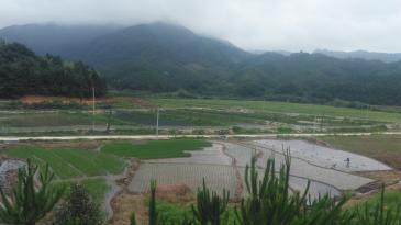 福建南平  35亩 水产养殖用地 转让