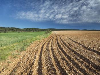 乌鲁木齐乌鲁木齐县 2600亩 荒地 转包