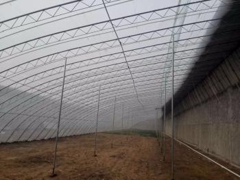 济南天桥区 50亩 水浇地 出租