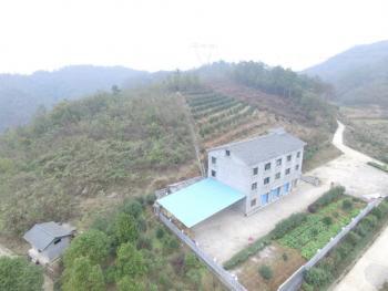 唐街:湖北宜昌城郊1700亩农场790万售