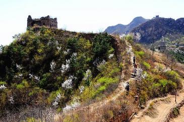 唐山迁西县500000亩其它特殊用地出租