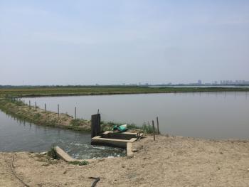 苏州吴江区 200亩 水产养殖用地 出租