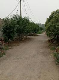 临沂郯城县35亩其它特殊用地转包