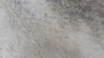 宿迁泗阳县 150亩 旱地 转包