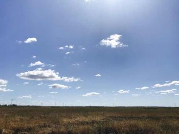 吉林松原 2998亩 农场 转包