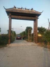 南京江宁区 100亩 农场 出租