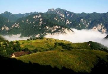 西安长安区 23055亩 有林地 转让