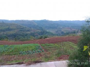 广安岳池县 1000亩 其它园地 合作
