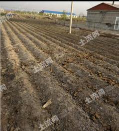 长春农安县 25亩 农场 转让