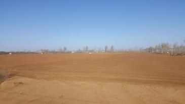 榆林榆阳区 200亩 水浇地 出租