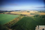 2015年农业发展分析 明确解决三农问题