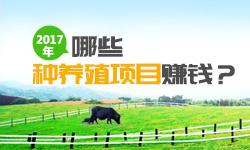 2017年哪些种养殖项目赚钱?热门种养殖项目市场前景分析 - 齐乐娱乐客户端