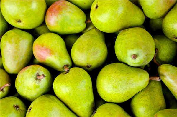香梨是什么季节的水果?多少钱一斤?和雪梨有