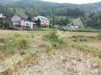 吉安  安福县 1000 荒地 出租(AF8)